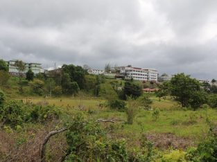 Get Limited Discount 1 Acre Prime Land, Mandeville