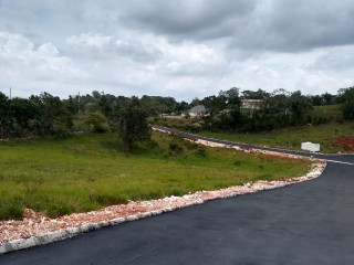 RESIDENTIAL LOT FOR SALE IN MANDEVILLE, MANCHESTER, JAMAICA