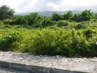 RESIDENTIAL LOT FOR SALE IN FAIRY HILL, PORTLAND, JAMAICA