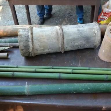Bambus tratados de especies diferentes