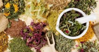 herbs-teas