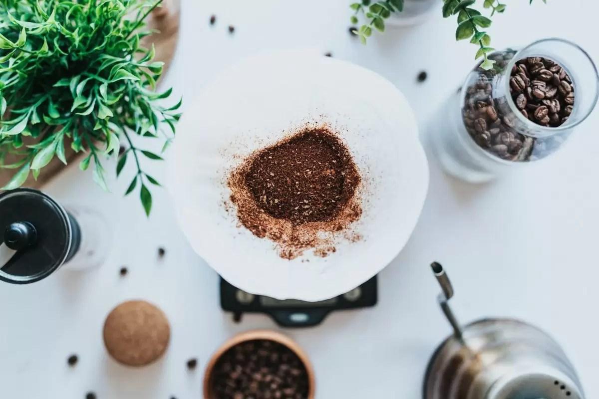 borra de café