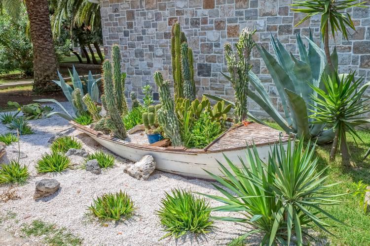 jardin en climat sec plantes et