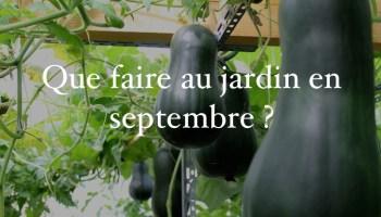 que faire au jardin potager en septembre - Quoi Faire Au Jardin