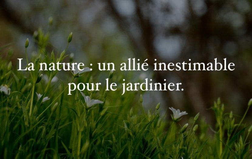 La nature, un allié inestimable pour le jardinier