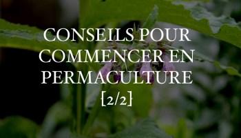 7 Conseils Pour Commencer Un Jardin En Permaculture 12