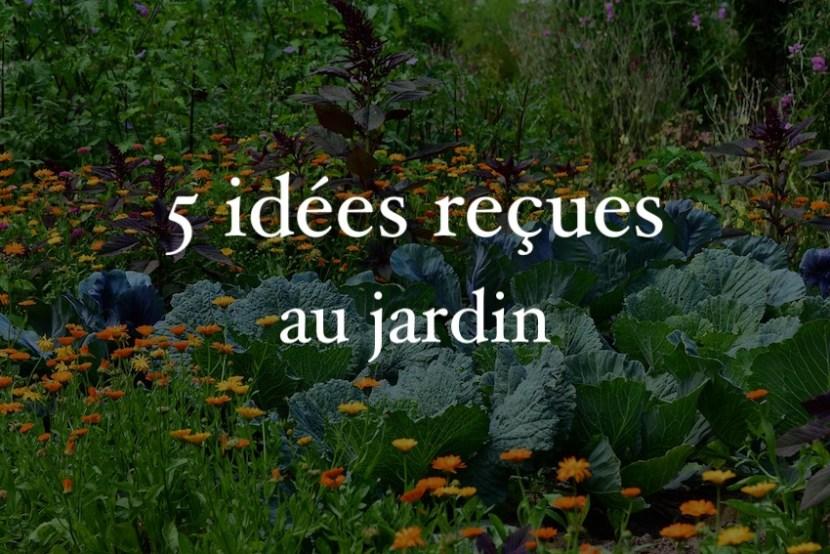 5 idées reçues au jardin potager