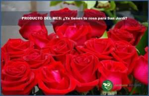 diapositiva rosas