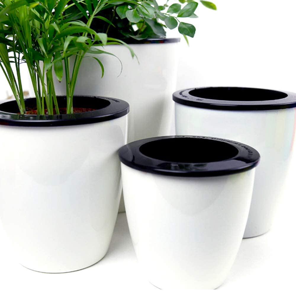 Self-watering pots are interesting for some plants