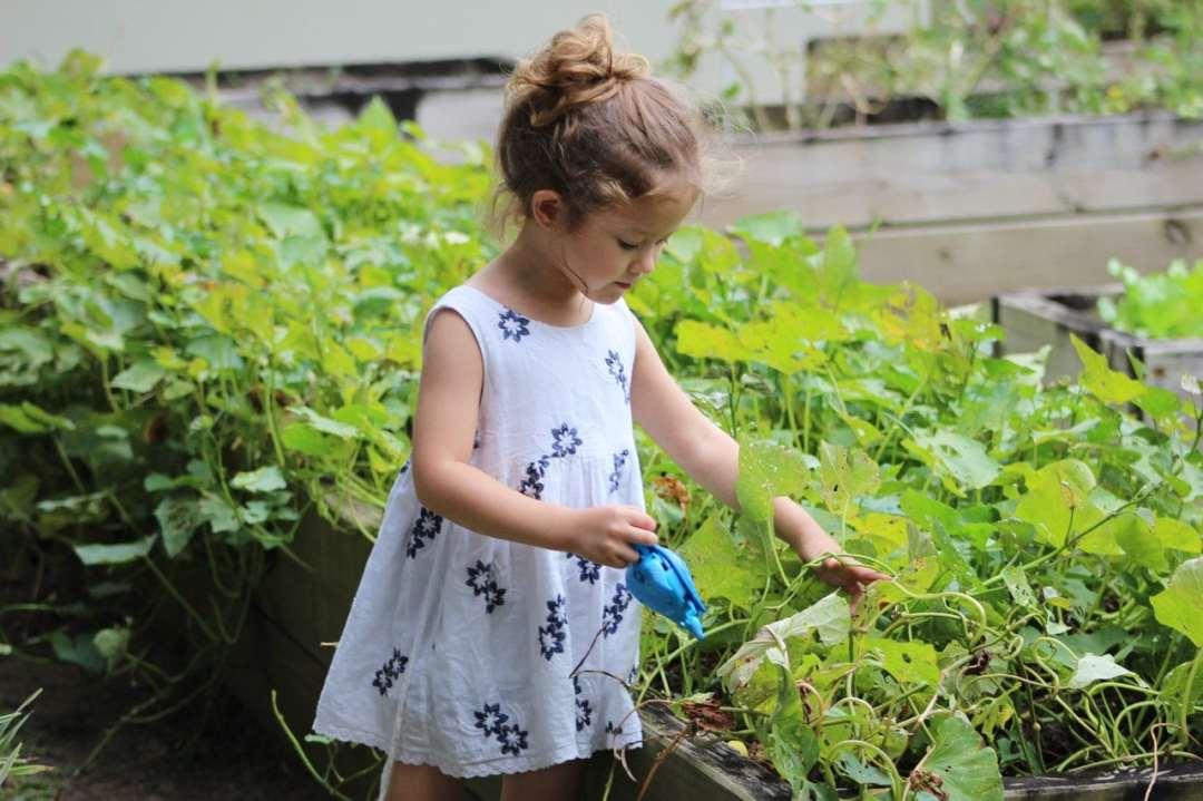 Gardening is an interesting world for children