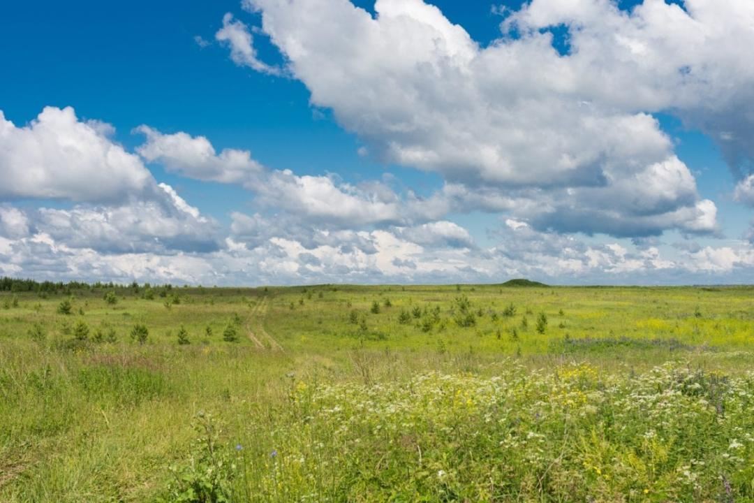 The temperate steppe has extreme weather
