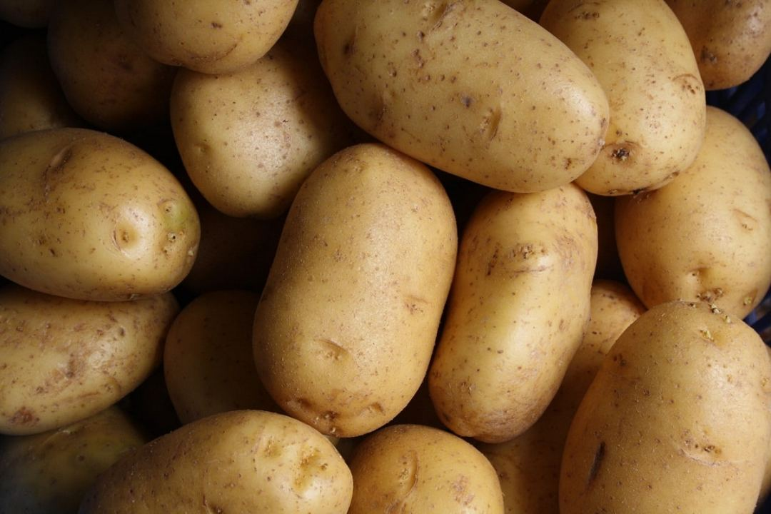 potatoes for frying and numerous recipes