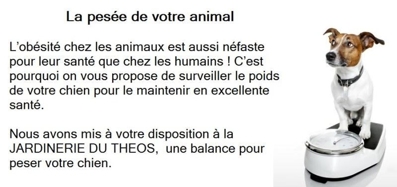 la pesée de votre animal