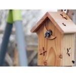 nichoir-couffin-oiseaux-mesanges-bleues-4