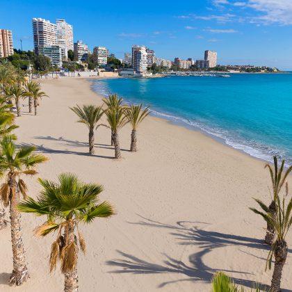 Alicante San Juan beach of La Albufereta with palms trees