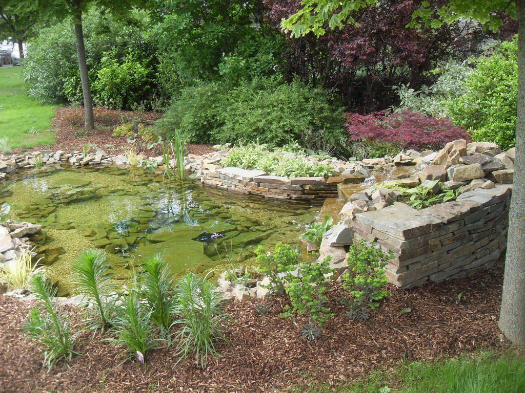 d eau liege jardins marechal hatert