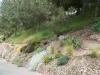 Sentier pinède 4