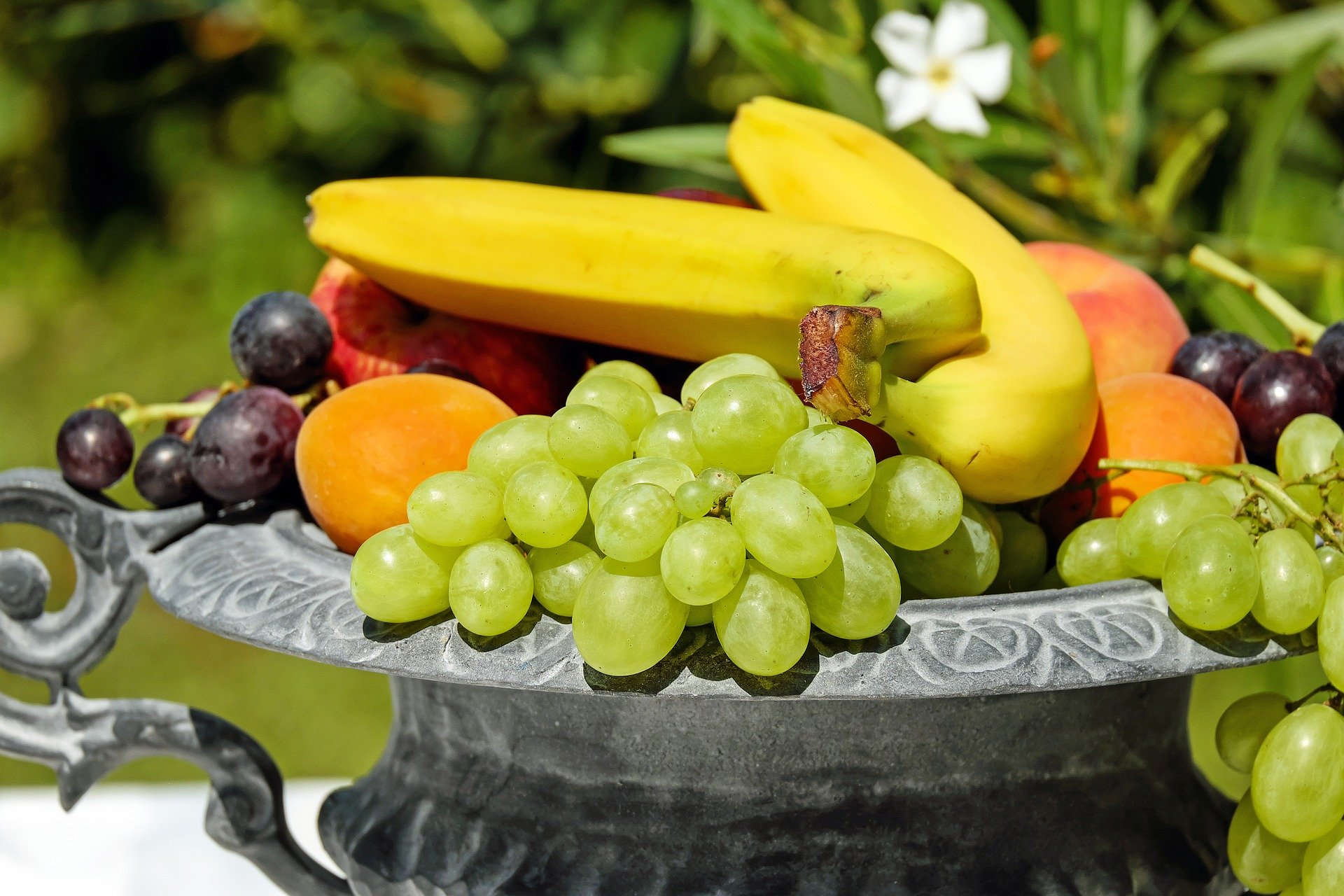 Coupe de fruits