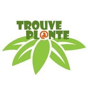 Trouve Plante