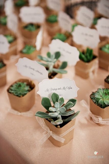 Mariage inspiration boh me cadeau zozomum cie for Acheter des plantes par internet