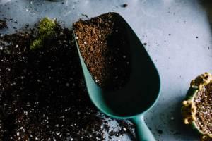 Les engrais et terreaux