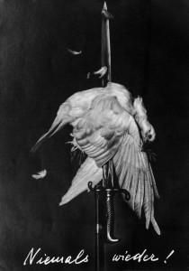 heartfield-poster-dove-bayonet