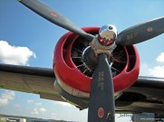Close-up of one of the Witchcraft's 1,200 hp Pratt & Whitney R-1830-65 engines.