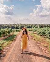 Girl in vineyards Kiepersol Winery