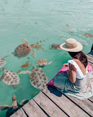 Exploring Isla Mujeres Off the Coast of Cancun