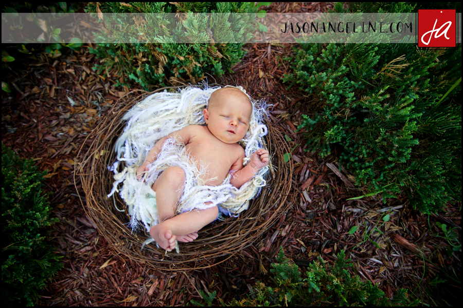 Newborn Session Nicole Anthony Big Brother and Baby Sister  Jason Angelini Photography
