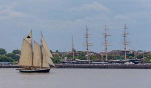 Philadelphia Tree of Life Tall Ship