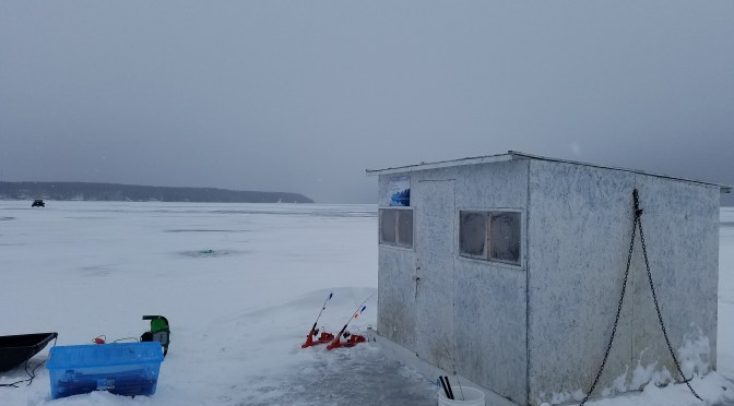 Why Not Choose Why Knot Guide Service for  Ice Fishing?