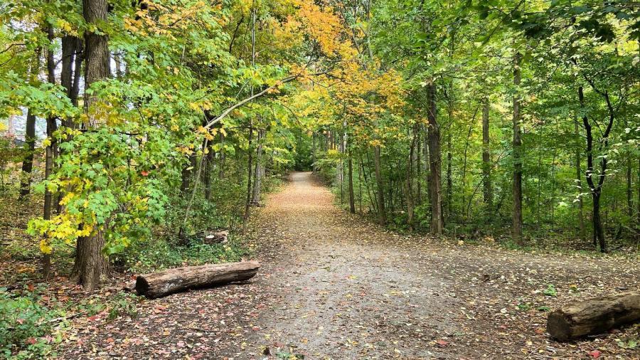 Breithaupt Trail