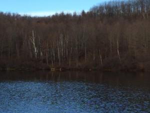 Lake Eden (Hall's Pond)