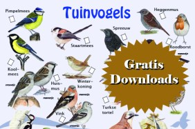 Gratis downloads-tuinvogels