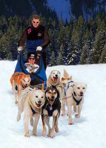 Dog sledding with Banff Travel Unlimted in the Canadian Rockies