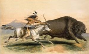 huntingbuffalo