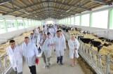 belje-farme-predstavljanje-srpanj-2012-001