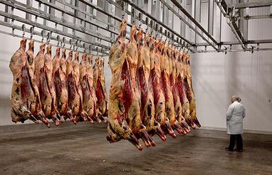 izvoz-meso-bih-midi