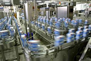 mlijeko-proizvodnja-midi