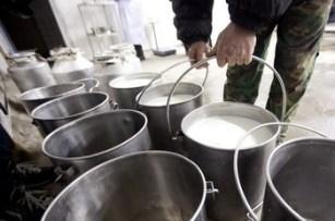 mlijeko-proizvodnja-midi2