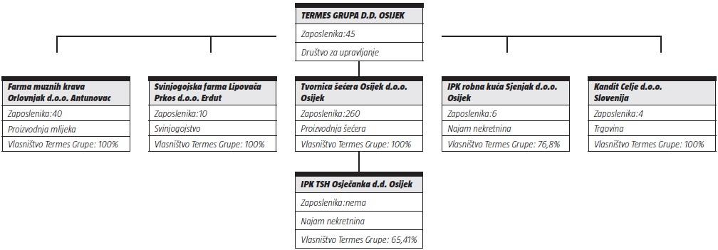 termes-grupa01