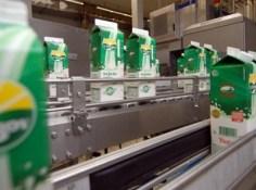 vindija-mlijeko-proizvodnja-midi