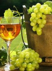 vino-grozde-midi
