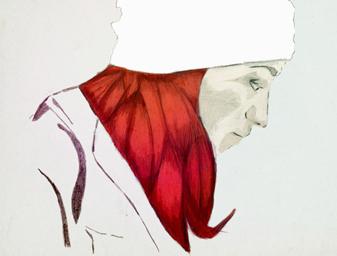 Illustration – Red
