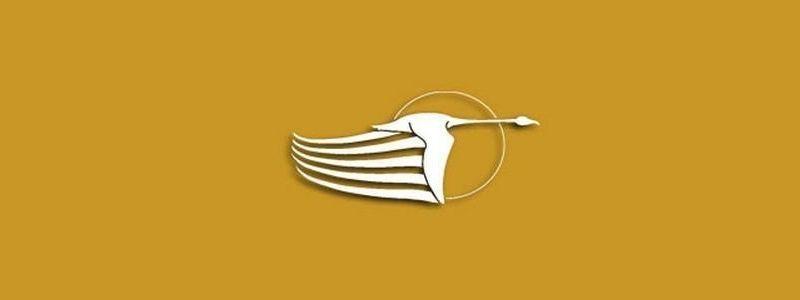 Lo de la aerolínea de vuelos personalizados Flamingo