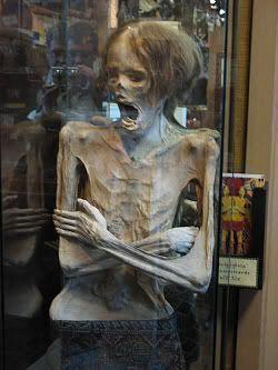 La momia de Ye Olde Curiosity Shoppe