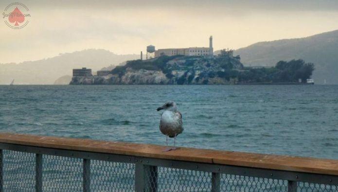 Cómo visitar Alcatraz cuando las entradas están agotadas
