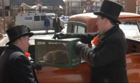 Transportando a la marmota Phil