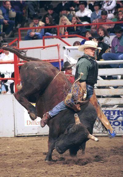 Un auténtico vaquero. Cowboys Day
